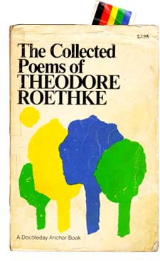 Theodore Roethke an introduction to the poetry