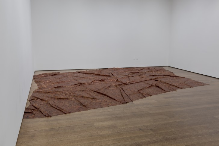 Installation view of A Flor de Piel in Doris Salcedo: The Materiality of Mourning, on display Nov. 4, 2016–Apr. 9, 2017 at the Harvard Art Museums. ©Doris Salcedo. Photo: Harvard Art Museums; ©President and Fellows of Harvard College